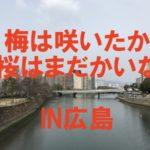 全国チェーン店なのに絶対に食べて欲しい広島グルメ3選【牡蠣(カキ)広島編】