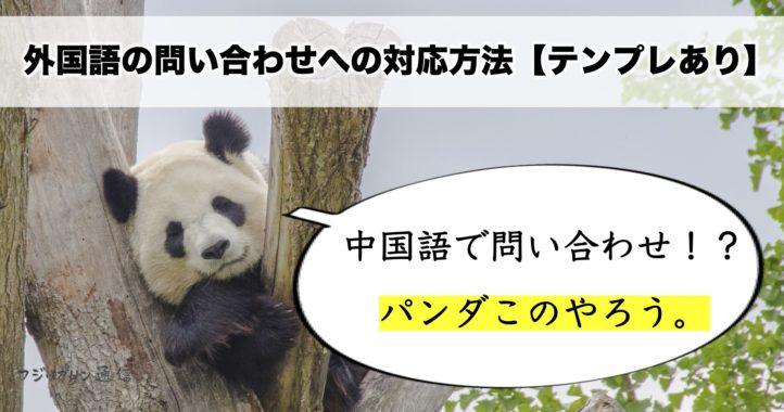 【もしもシリーズ】漢字ばかりの中国語で問い合わせがきたら【外国語への対応方法】