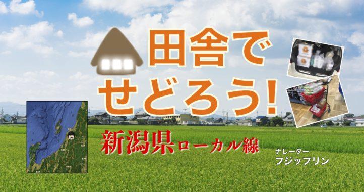 【田舎でせどろう!】新潟県ローカル線でせどり仕入れ同行【フジップリン】